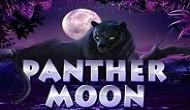 Игровой автомат Panther Moon играть онлайн